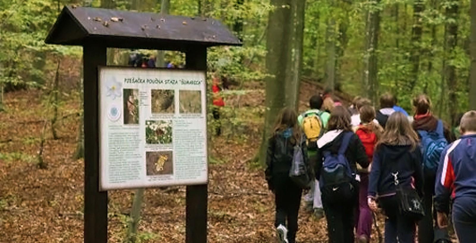 Educational walking path Šumarica